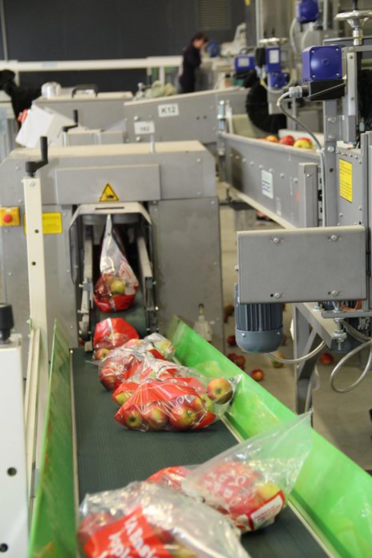 3 torba produkcja