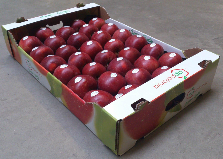 Red Jonaprince 6kg 1 wytłoczka 14